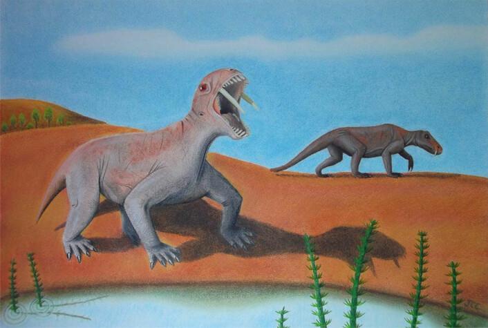 De store tennene var antagelig nyttige når dyrene skulle få seg en make. (Illustrasjon: Juan Cisneros)