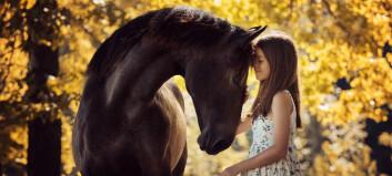 Hesten kan si fra om den er varm eller kald