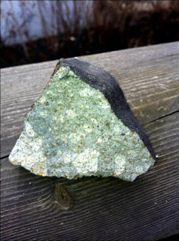 Slik ser meteoritten ut. Legg merke til den svidde utsiden og det spesielle utseendet på innsiden. (Foto: Rune Thomassen)