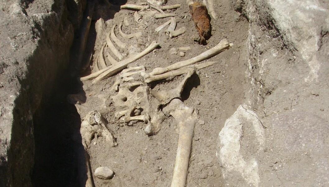 To skjeletter, funnet med jernstenger gjennom brystet, har fått bulgarske arkeologer til å tenke på vampyrer. National Museum of History, Bulgaria