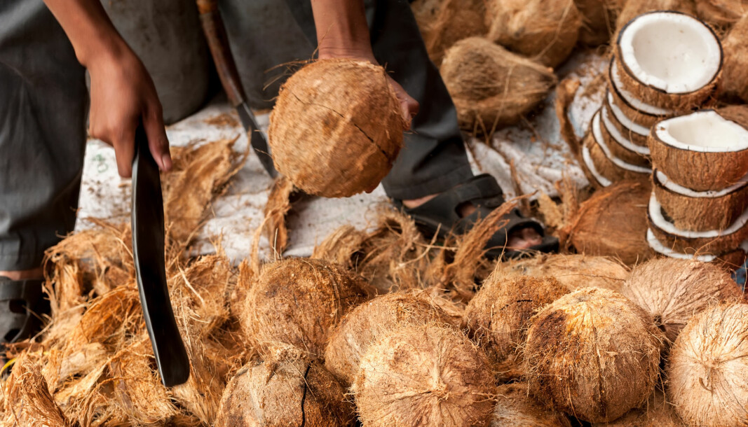 New research finds that coconut production threatens a lot more endangered species than initially thought.