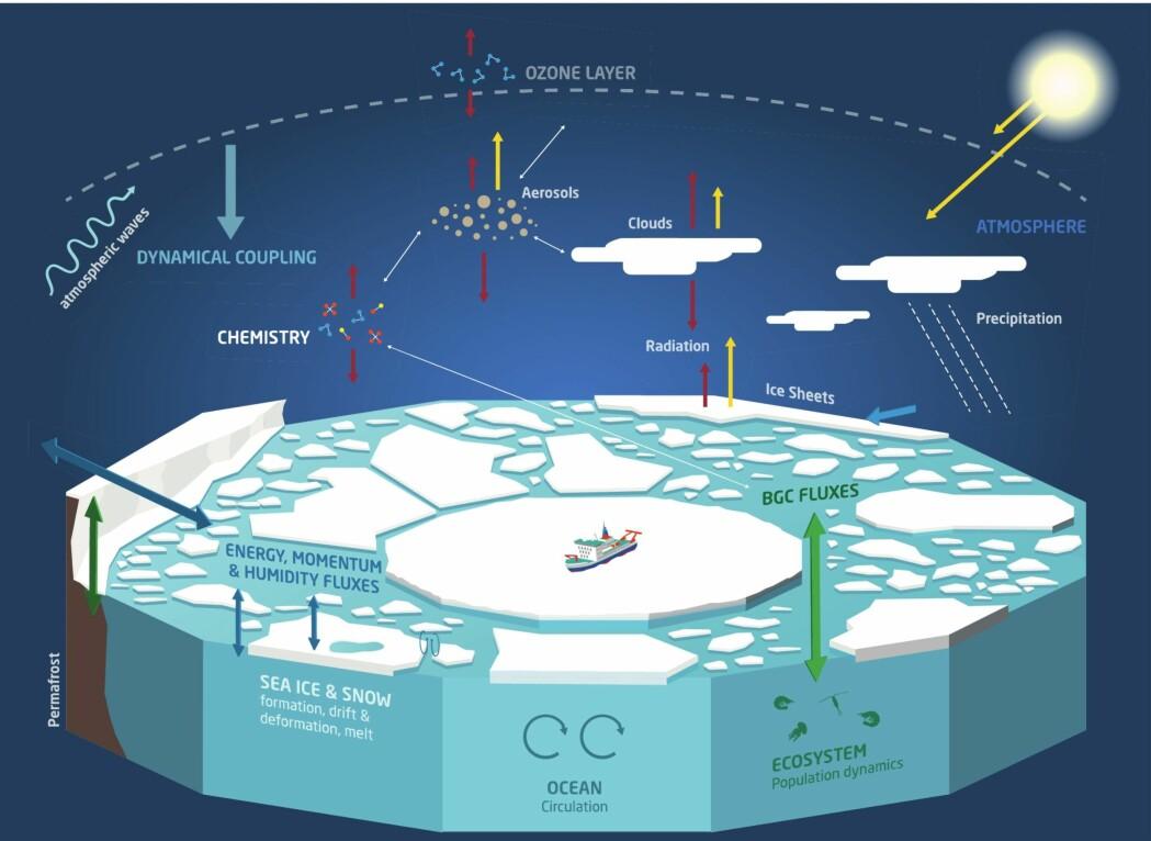 """Infografikken viser vitenskaplige fokusområder i MOSAiC, navnet kommer av """"Multidisciplinary drifting Observatory for the Study of Arctic Climate""""."""