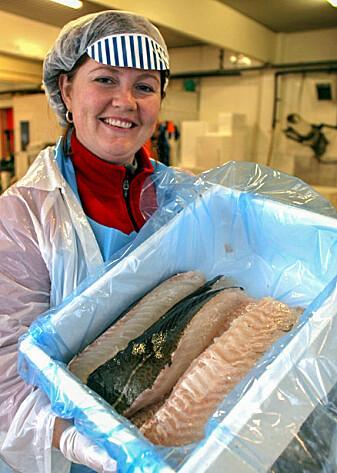 Her har jeg skåret filet av flott torsk i forbindelse med et forskningsprosjekt.
