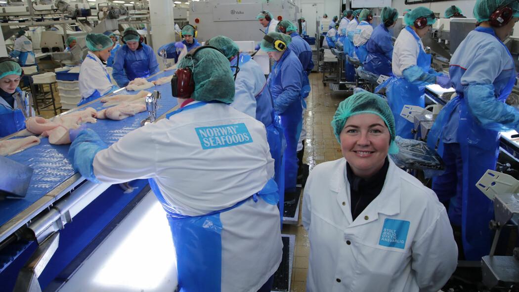 Jeg er så heldig å få jobbe med fisk fortsatt, selv om jeg ikke jobber på filetlinja lenger. Her fra et prosjekt hvor vi samarbeidet med Lerøy Norway Seafoods i Melbu.