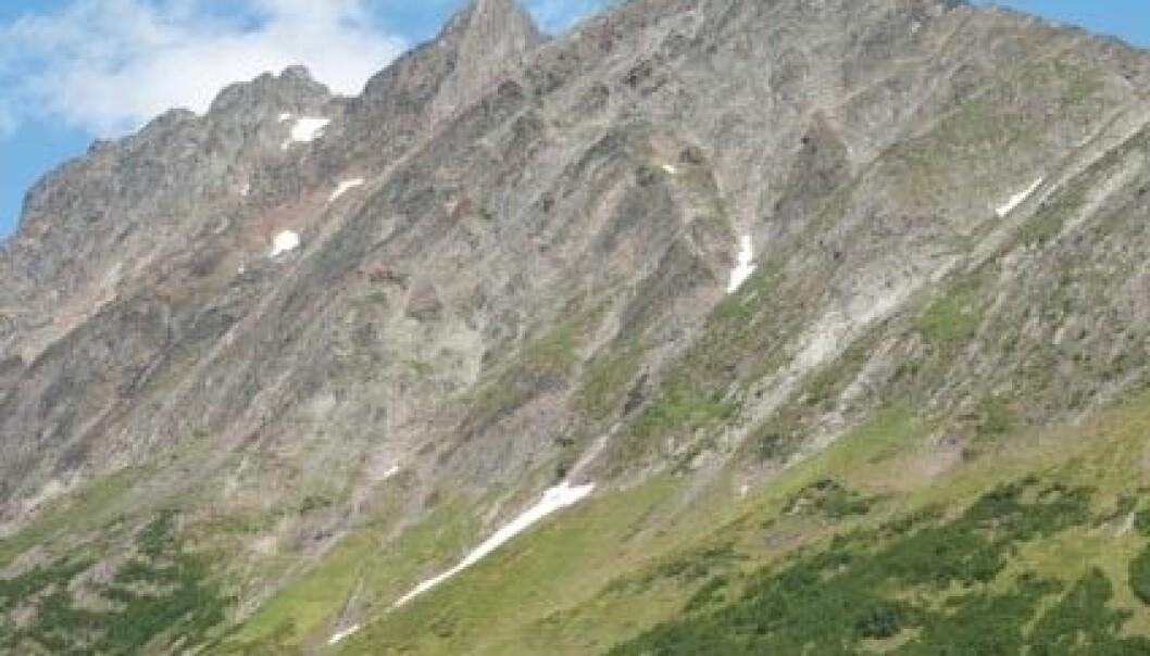 Troms er frodigaste fylket