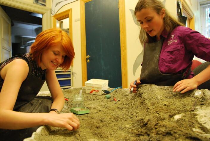 Victoria Nash (t.v.) og Aubrey Roberts bruker solfylte sommerdager i kjelleren på Geologisk museum. Der pirker de fiskeøgla Mikkel frem fra grushaugen den er bevart i. (Foto: Hanne Østli Jakobsen)