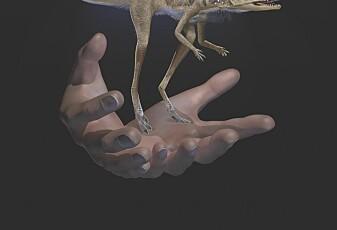 Sjekk den bitte lille dinosauren!