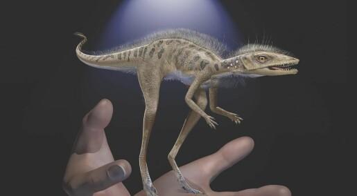 Hadde dinosaurene en bitte liten forfar?