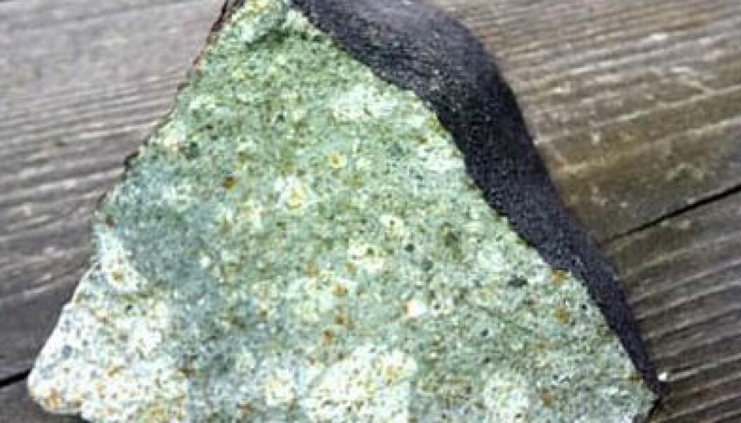 Slik ser meteoritten ut. Legg merke til den svidde utsiden og det spesielle utseendet på innsiden. Rune Thomassen