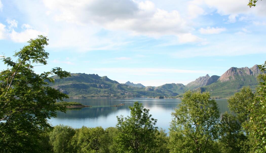 Reiselivsekspertene anbefaler å besøke randsonene av de meste kjente stedene i Nord-Norge, blant annet Vesterålen.