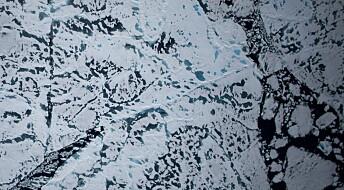 Flere årsaker til smeltende havis