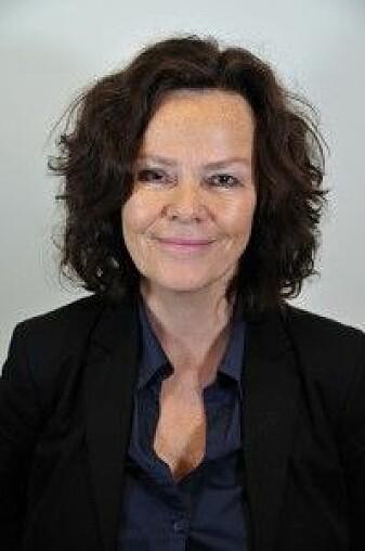 Anne Lise Ellingsæter er professor ved Institutt for sosiologi og samfunnsgeografi ved UiO.