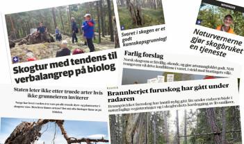 Opphetet debatt om truede arter og skognæringas miljøansvar i Notodden