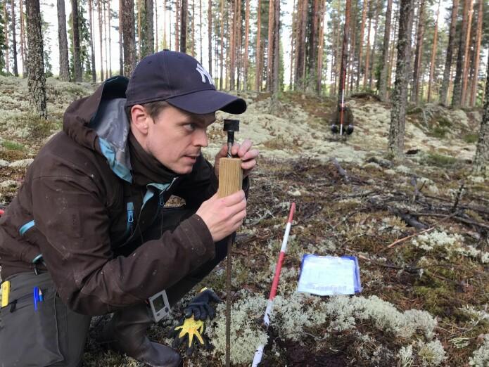 Jarle Reime, NIBIO, i gang med å anlegge forsøksfeltet i Kongsvinger.