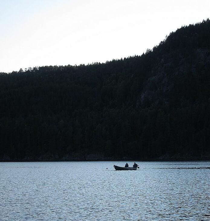 Røyene i innsjøene er en ny art i evolusjonssammenheng, siden innsjøene kun har fantes siden siste istid for ti tusen år siden.