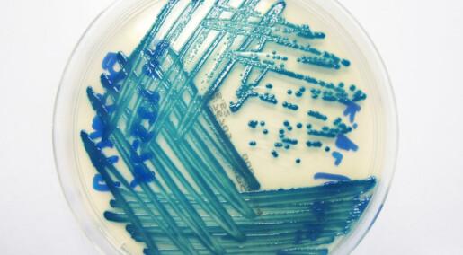 Små hjelpestoffer kan få gammel antibiotika til å virke igjen