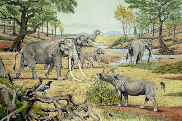 Illustrasjon av Europa i den siste mellomistiden, for mellom 132 000 og 110 000 år siden. (Foto: (Illustrasjon: Elke Gröning))