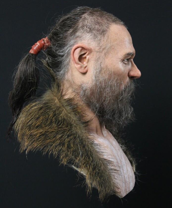 Villsvin var en inspirasjon for rekonstruksjonens hårete utseende.