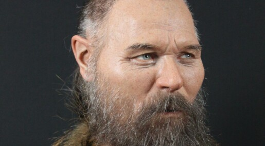 Halshogd steinaldermann har fått nytt ansikt
