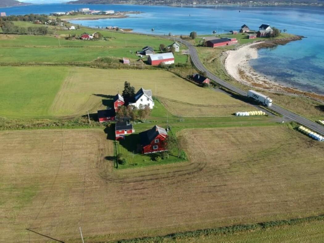 Her, på Sandtorg ved Tjeldsund, har det vært handelssted fra så tidlig som 800-tallet. Det oppdaget masterstudenten Tor-Ketil Krokmyrdal.