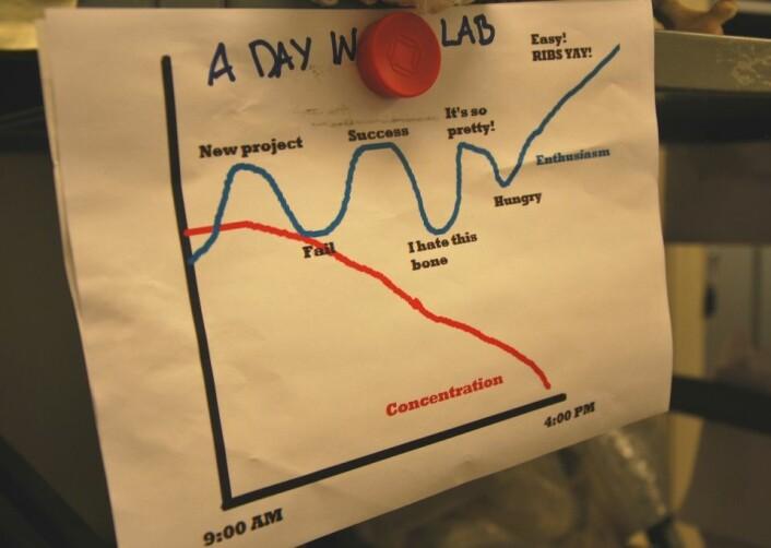 På veggen henger en grafisk fremstilling av fossilprepareringsprosessen. Ribbein - ribs - er en samlebetegnelse for alt som er lett å preparerer, forteller Nash, og gjerne det du går løs på når konsentrasjonen er på bunn. (Foto: Hanne Østli Jakobsen)