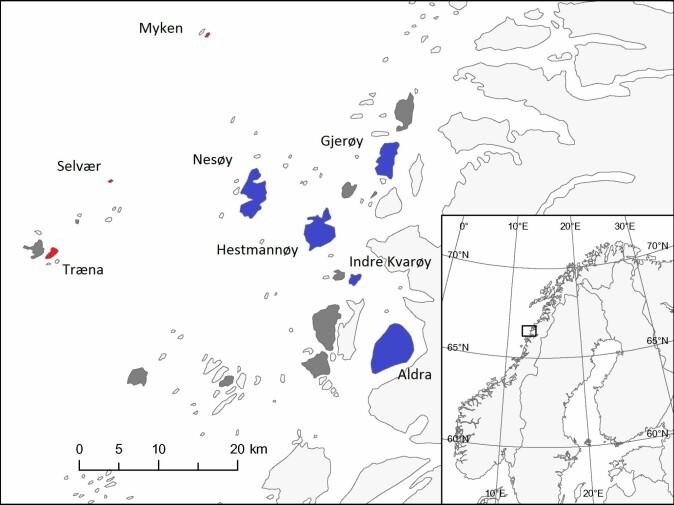 Øyene med rød og blå farge representerer ulike leveområder. Blå er øyer der spurvene lever på gårdsbruk. Rød er der spurvene lever i hagene til folk.