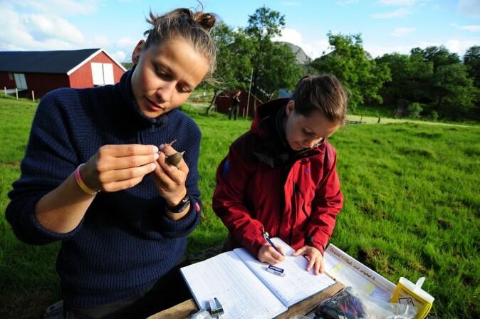 Masterstudentene Malene Vågen Dimmen og Marlene Wæge Stubberud ute i felten.