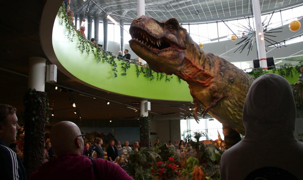 Her har den fryktinngytende kjendisen Tyrannosaurus rex våknet til live.