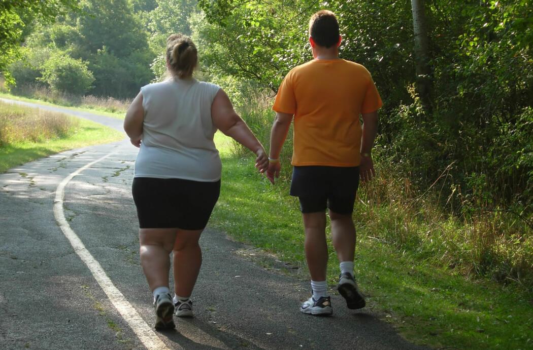 Vi vil se en forverring i fedmeepidemien på grunn av koronakrisen, spår tre danske forskere i en kommentar i tidsskriftet Nature.