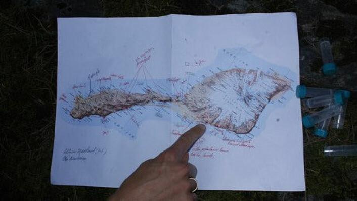 Torbjørn Ekrem peker på den delen av nordsida av Jan Mayen som de skal ta prøver fra. På denne siden ligger vulkanen Beerenberg. Forskerne skal for det meste holde seg på sørsida av Jan Mayen, som på dette kartet er til venstre. (Foto: Stina Åshildsdatter Grolid)