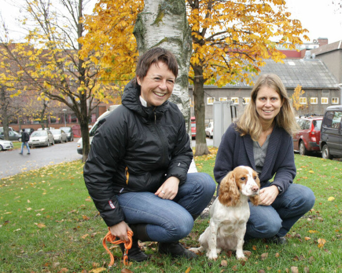 Cocker spanielen Mir (5) får noen ganger være med forsker Kristin Wear Prestrud på jobb. Her er de avbildet med NVH-jurist Marit Nesje (høyre). (Foto: Ida Korneliussen)