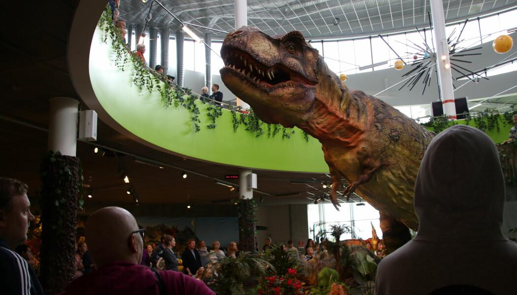 I byen Sarpsborg kan man nå se 15 modeller av dinosaurer i sin rette størrelse.
