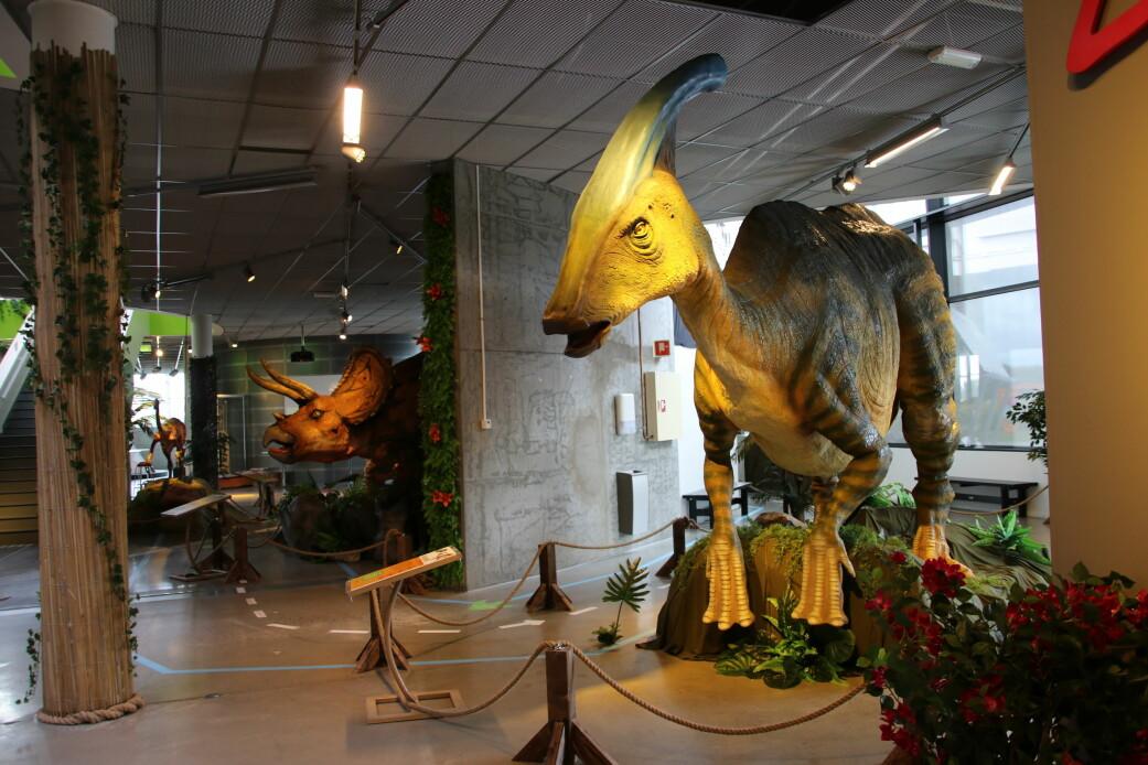 Nebbdinosauren Parasaurolophus var en stor planteeter. Den hadde en utvekst på hodet. Før trodde forskere at det var en snorkel. Men nå mener de at det var en slags trompet. Dinosauren kunne blåse i hornet og lage en dyp lyd som hørtes kilometervis unna.