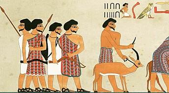 Egypts første utenlandske dynasti kan ha grepet makten innenfra
