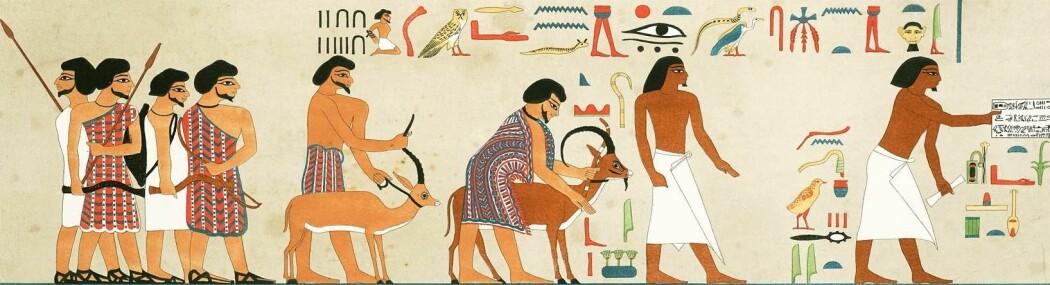 Egyptisk kunst som viser en gruppe vestasiatere som ankommer Egypt i fargerike klær, omtrent 1900 f.Kr. Egypterne (til høyre) er kledd i hvitt. Tegningen kan vise forgjengerne til hyksosene.