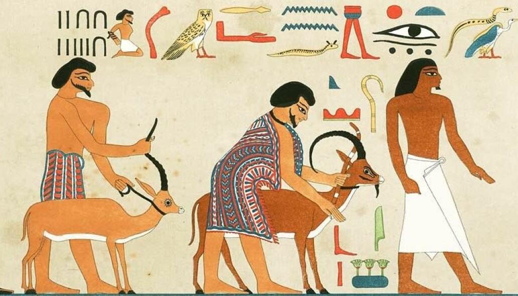 Hyskos-dynastiet regjerte i Det gamle Egypt rundt 1759-1550 fvt. Men de grep ikke makten med vold, mener forskere. Bildet er et utsnitt fra egyptisk kunst som viser en gruppe vest-asiatere som ankommer Egypt - du kan se hele bildet lenger nede i artikkelen.