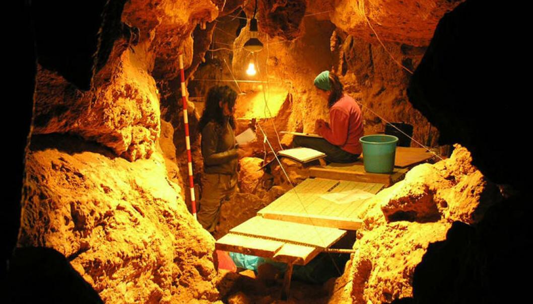 Forskere jobber i El Sidrón-hula. CSIC Comunicación