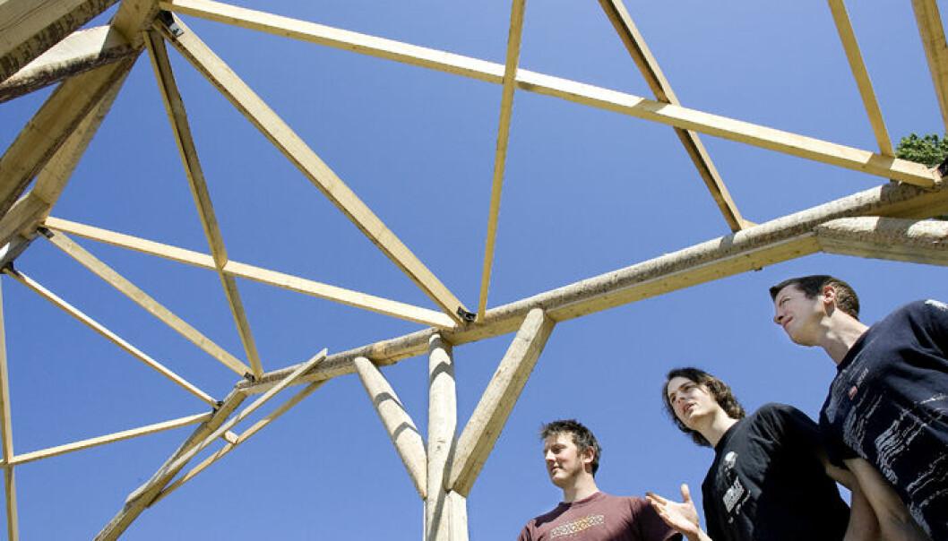"""""""Studentene (f.v.) Knut Erik Ree, Kristian Williamsen og Torfin Andersen mener de skjønner mer av se det i full størelse, og angrer ikke på storverket."""""""