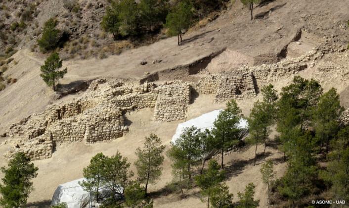 Inngangspartiet til bosettingen består av kraftige murer og tårn. Fem tårn er synlige på dette bildet. (Foto: ASOME-UAB)