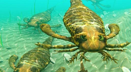 Forhistoriske sjøskorpioner kunne bli over to meter lange