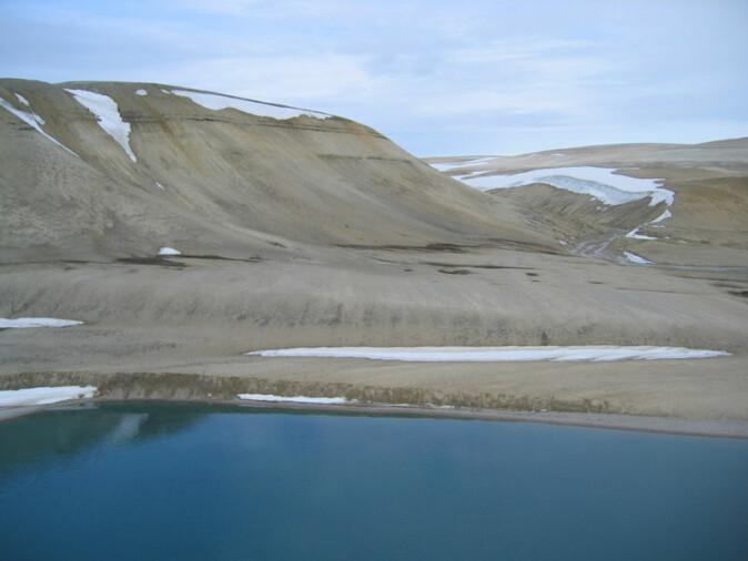 Goldt, nesten vegetasjonsløst landskap på nordsida av Palanderbukta. Store deler av Svalbards landskap er vegetasjonsfattig.