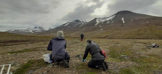 Overvåkningen av vegetasjonen på Svalbard skal dokumentere effekter av klimaendringer på arktiske tundra og spesielt overvåke fjellrev, svalbardrype, svalbardrein, gjess og mose-tundra vegetasjon.