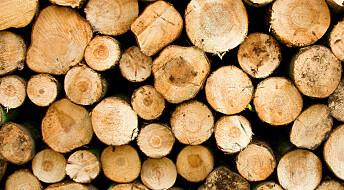 Bakgrunn: Matematisk skogbruk