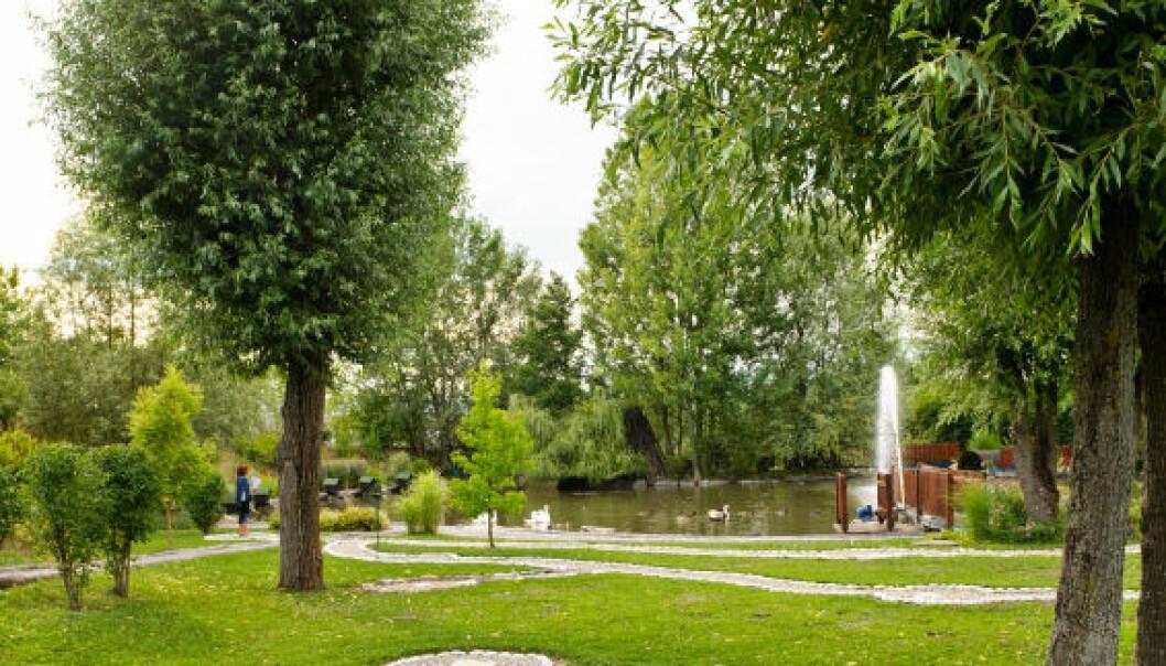 Færre parker truer folkehelsen