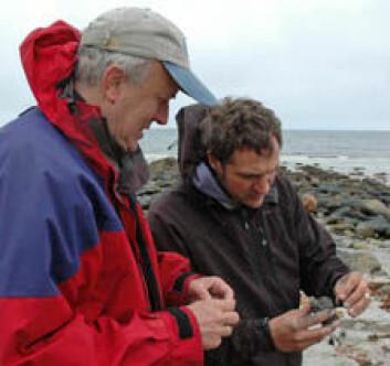 Forskerne Odleiv Olesen og Marco Brönner studerer prøver av sandstein på Andøya. (Foto: NGU)