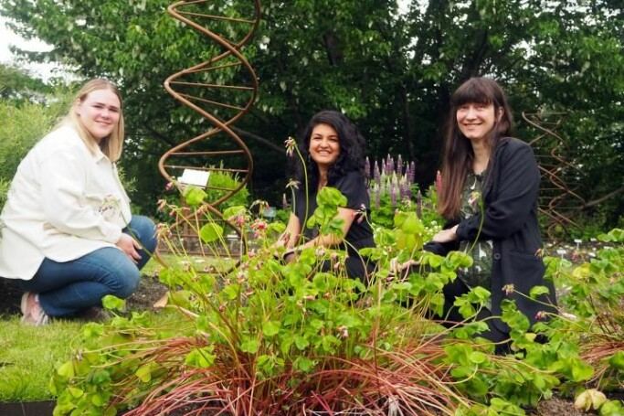 Researchers (from left) Mari Elisabeth Engelstad, Maria Ariza Salazar and Eva Lieungh taking soil sample positions in Oslo's Botanical Gardens, in front of a famous dove tree and a supersized DNA helix.