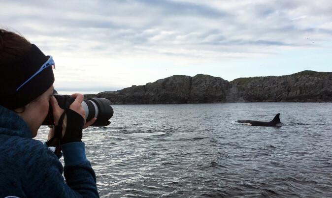 Eve Jourdain med kameraet: Fotografering er en viktig del av denne forskningen.