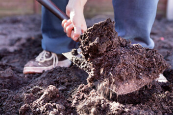 Fosfor er en begrenset ressurs som vi må ta bedre vare på. (Illustrasjonsfoto: iStockphoto)