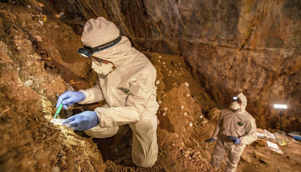 Var det mennesker i Amerika dobbelt så langt tilbake som det man har trodd? I en hule nord i Mexico mener arkeologer å ha funnet 30 000 år gamle bevis på det. Her samler universitetslektor ved Universitetet i København, Mikkel Winther Pedersen, inn prøver i Chiquihuite-hulen.