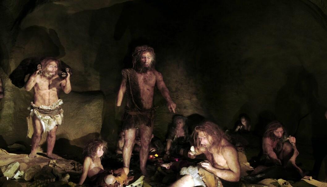 Forskere har oppdaget at de som har arvet en genvariant fra neandertalere har lavere smerteterskel.